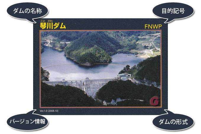 ダムカード(表面)の見方について